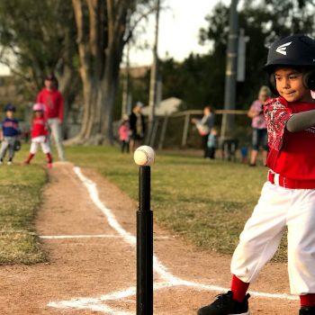 Tee-ball batter